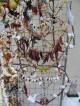Конкурс за сурвачки обявяват в Стара Загора